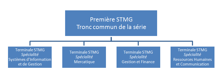 Image organisation STMG